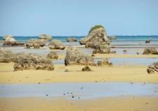 海 白い砂浜